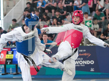 08/06/2019 - Gabriele Siqueira - ROMA 2019 WORLD TAEKWONDO GRAND PRIX (DAY 2) - TAEKWONDO - CONTATTO
