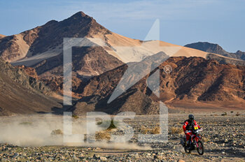 13/01/2021 - #01 Brabec Ricky (usa), Honda, Monster Energy Honda Team 2021, Motul, Moto, Bike, action during the 11th stage of the Dakar 2021 between Al-'Ula and Yanbu, in Saudi Arabia on January 14, 2021 - Photo Eric Vargiolu / DPPI - 10TH STAGE OF THE DAKAR 2021 BETWEEN NEOM AND ALULA - RALLY - MOTORI