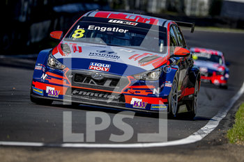 11/09/2020 - 08 Engstler Luca (deu), Engstler Hyundai N Liqui Moly Racing Team, Hyundai i30 N TCR, action during the 2020 FIA WTCR Race of Belgium, 1st round of the 2020 FIA World Touring Car Cup, on the Circuit Zolder, from September 11 to 13, 2020 in Zolder, Belgium - Photo Paulo Maria / DPPI - FIA WORLD TOURING CAR CUP 2020 - BELGIO - TURISMO E GRAN TURISMO - MOTORI