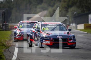 11/09/2020 - 88 Castburg Nicky (nld), Engstler Hyundai N Liqui Moly Racing Team, Hyundai i30 N TCR, action Race 2 during the 2020 FIA WTCR Race of Belgium, 1st round of the 2020 FIA World Touring Car Cup, on the Circuit Zolder, from September 11 to 13, 2020 in Zolder, Belgium - Photo Paulo Maria / DPPI - FIA WORLD TOURING CAR CUP 2020 - BELGIO - TURISMO E GRAN TURISMO - MOTORI