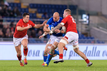 09/02/2019 - Sergio Parisse - ITALIA VS GALLES SIX NATIONS 2019 - NAZIONALI ITALIANE - RUGBY