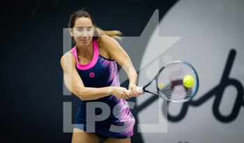 08/11/2020 - Oceane Dodin of France in action against Laura Ionana Paar of Romania during the second qualifications round at 2020 Upper Austria Ladies Linz WTA International tennis tournament on November 8, 2020 at TipsArena Linz in Linz, Austria - Photo Rob Prange / Spain DPPI / DPPI - 2020 UPPER AUSTRIA LADIES LINZ WTA INTERNATIONAL TOURNAMENT - SUNDAY - INTERNAZIONALI - TENNIS