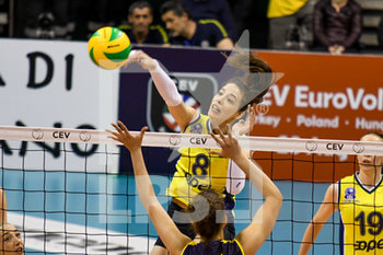 02/04/2019 - Dicle Babat - CEV SEMIFINALI 2019 - IMOCO CONEGLIANO VS FENERBAHçE - CHAMPIONS LEAGUE WOMEN - VOLLEY