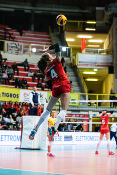 07/02/2019 - herbots - UNET E WORK BUSTO ARSIZIO VS MULHOUSE - CEV CUP WOMEN - VOLLEY